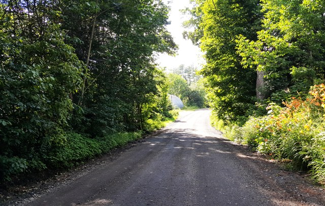 new ditches on Stevens Rd